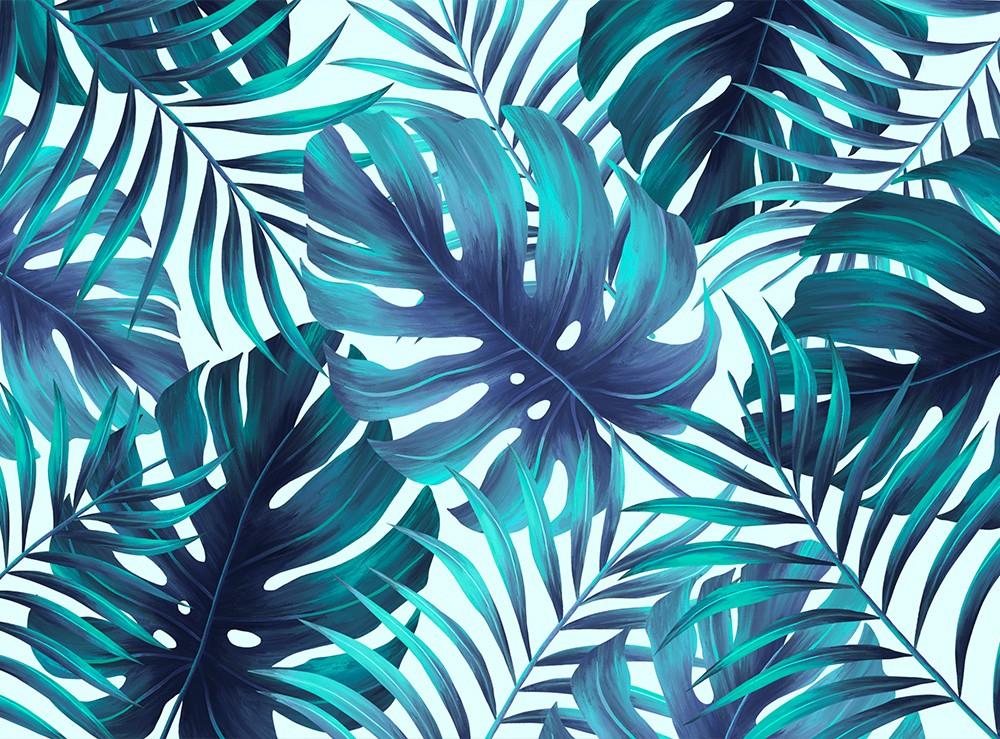 Rośliny egzotyczne, liście palmy